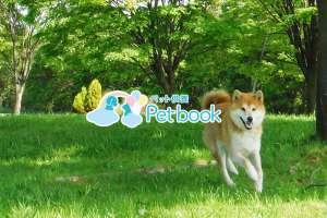 ペット供養サービス「Petbook」