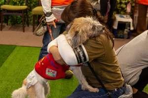抱き合うスタッフと犬