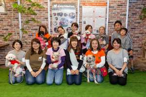 保護犬譲渡会 全員集合写真