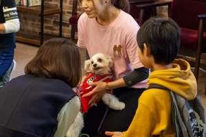 親子で保護犬と触れ合う